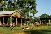 Aussie Farm, Food and Wine Trail -