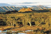 West MacDonnell Ranges and Town Tour -