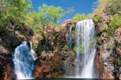 Litchfield National Park Tour -