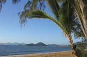 Cape Tribulation Explorer Tour