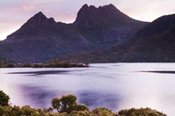 7 Day Tassies Parks and Nature Tour -