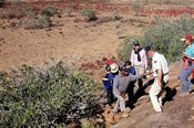 Ayers Rock Cave Hill Safari -