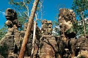10 Day Kimberley Panorama Tour -
