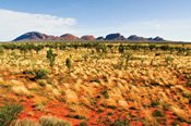 Outback Panorama 11 Day Tour from Ayers Rock to Darwin -