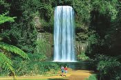 10 Day Tropical Islands & Rainforest Guided Holiday from Brisbane to Cairns