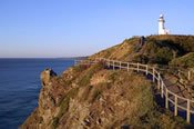 Byron Bay and Mt Warning Coach Tour -