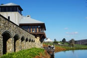 Milbrook Winery Experience and Scenic Helicopter Flight -