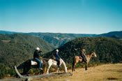 Cox's Canyon Lookout 3 Hour Ride -