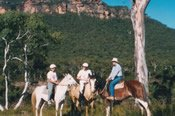 1.5 Hour Blue Mountains Explorer Horse Riding Tour -