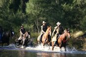 Overnight Dude Ranch Horse Riding Package -