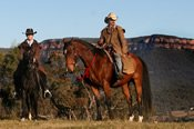 Overnight Cox's River Horse Riding Package -