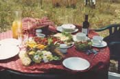 The Country Amble Walking Picnic -
