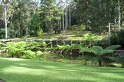 2.5 Hour Tamborine Meander Motorcycle Tour -