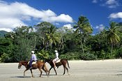 Horse Riding and Reef including Helicopter Flight -