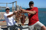 Kalbarri Rock Lobster Experience -