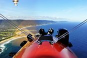 Whale Watching Scenic Flight over Illawarra -