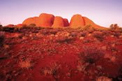 3 Day Uluru and Kings Canyon Unearthed -