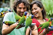 Currumbin Wildlife Sanctuary One Day Pass -