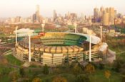 Melbourne City Tour with MCG and National Sports Museum - Bushwalking, Nature & Wildlife