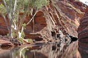 14 Day Perth to Broome Tour with Return to Perth -