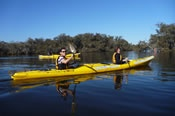 Half Day Canning River Canoe Tour -