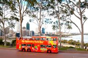 Perth and Fremantle Cruise Bus and Tram Tour -