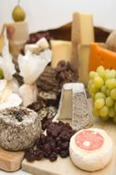Appreciation Class for Cheese Lovers -