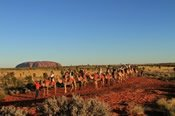 Uluru Sunset Camel Tour - Horse Riding