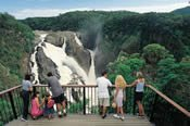 Kuranda, The Tablelands and Skybury Coffee Tour -