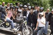 3 Hour Wisemans Ferry Harley Tour -