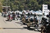 North Sydney Tour on a Harley Davidson -