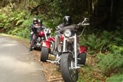 Harley Davidson Chauffered Tours Outside of Sydney including Lunch -