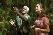 Daintree and Mossman Gorge Tour from Port Douglas -