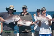 Port Stephens Deep Sea and Reef Fishing Trip -