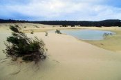 Fraser Island 3 Day Camping Tour - Rainbow Beach