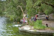 North Stradbroke Island Day Tour -