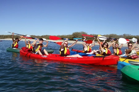 Half Day Dolphin and Straddie Kayaking Tour