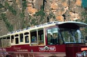 Blue Mountains Hop on Hop off Trolley Tour -