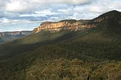 Blue Mountains Ruined Castle Bush Walk with Scenic Railway -