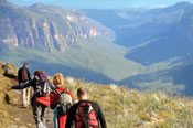 Blue Mountains Panoramic Guided Walk -