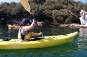 Under the Sydney Harbour Bridge Kayaking  Private Tour -