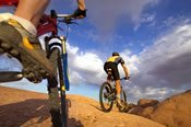 Narrow Neck Mountain Bike Adventure -