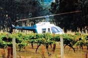 Helicopter Flight to Hunter Valley with Gourmet Lunch