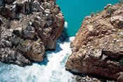 Buccaneer Cape Leveque Explorer Half Day Tour -