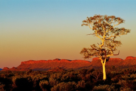 1 Day West MacDonnell Ranges Tour -