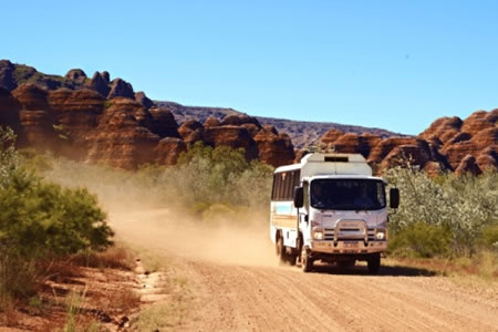 Bungle Bungle 4WD Full Day Tour - Bushwalking, Nature & Wildlife