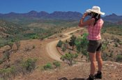 7 Days Alice Springs to Adelaide Unleashed Adventure -