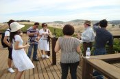 Barossa Wine and Heritage Tour -