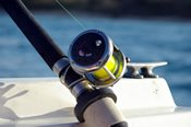 Port Stephens Morning Deep Sea Fishing Trip -