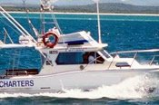 Port Stephens 5 Hour Afternoon Reef Fishing Trip -